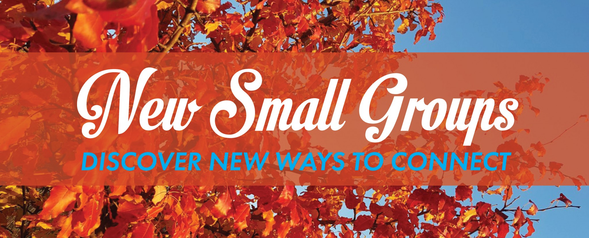 Small Groups fall 2020