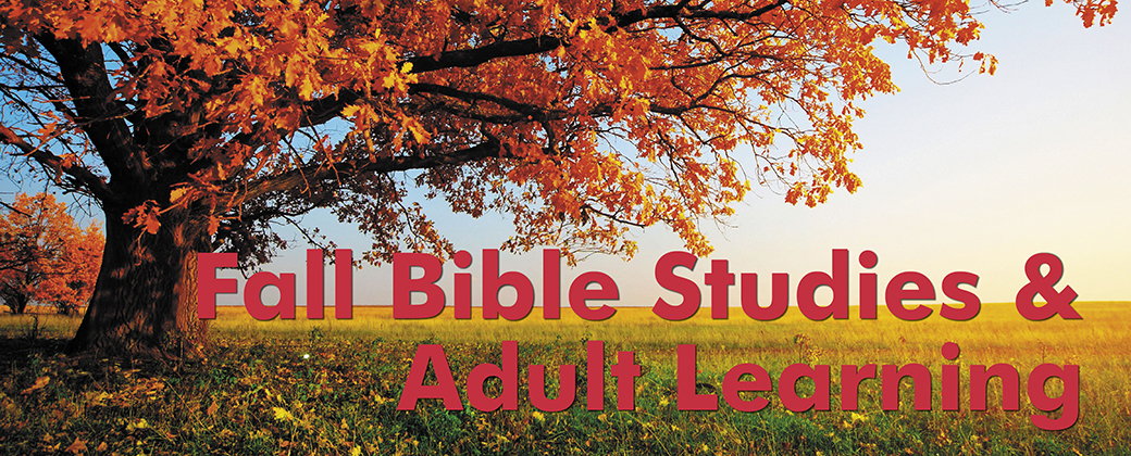 adult learning fall 2015