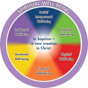 Adult_Wholeness Wheel