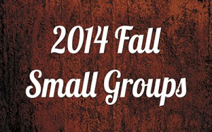 2014 Fall Small Groups