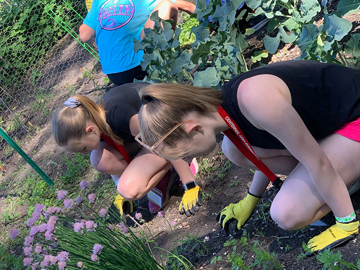 Lydia Place – weeding at the community garden